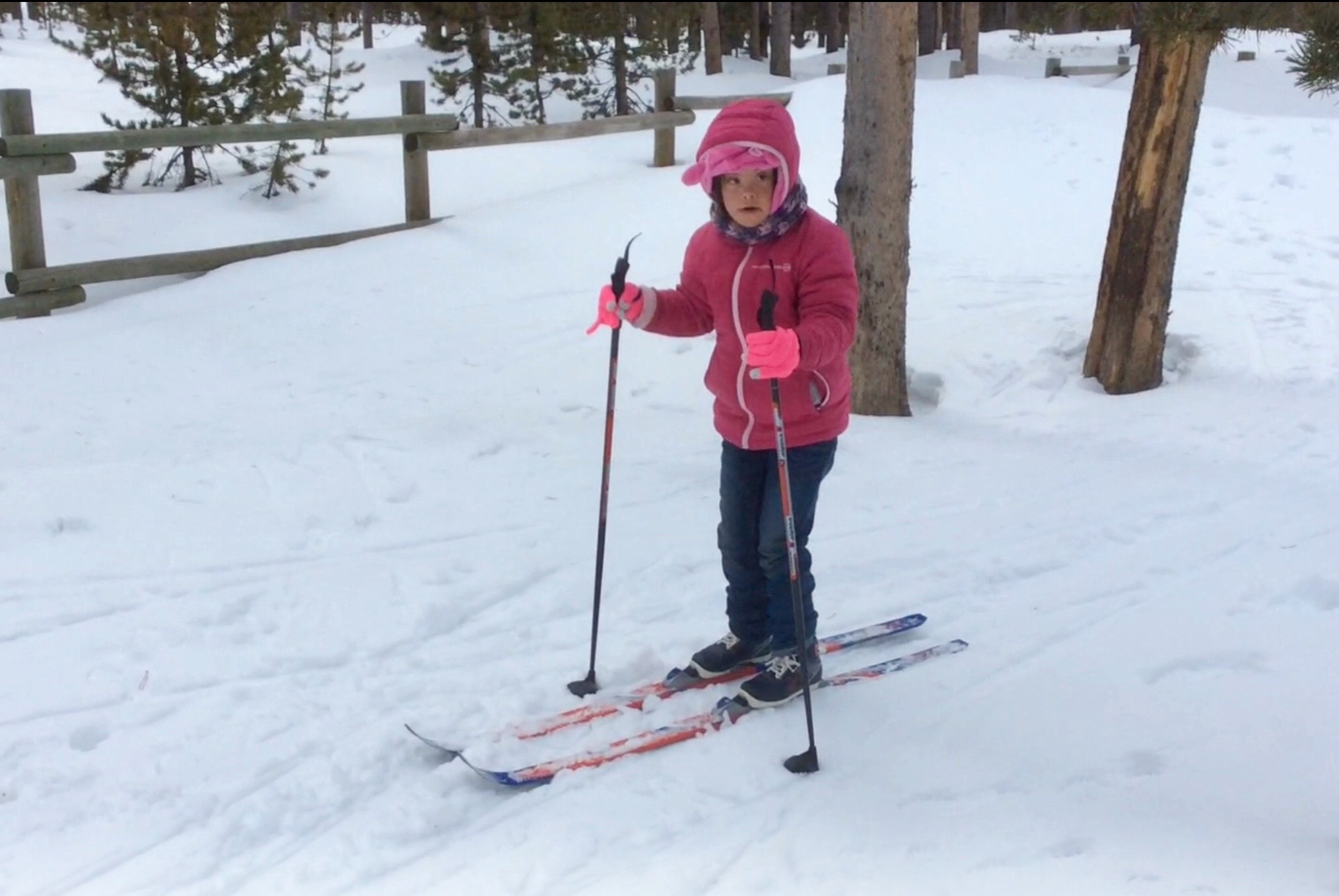 Sandra skiing